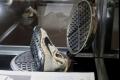 """""""حذاء القمر"""".. قديم وسعره 50 ألف دولار!"""