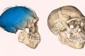 اكتشاف أقدم بقايا للإنسان العاقل في المغرب