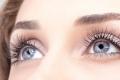 هذه الأعشاب الـ8 مفيدة لعلاج العيون