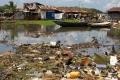هل التهمت جراثيمٌ حديثة 90% من مخلفات المحيطات البلاستيكية؟
