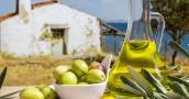 «البترول الأخضر» حاصد الجوائز العالمية.. ما هو سر زيت الزيتون التونسي الذي ينافس إنتاج إسب ...