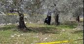 العثور على جثة مواطن مشنوقاً وقد فقدت آثاره منذ أيام