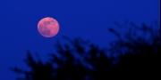 هل نقول وداعاً للقمر؟ إنه ينكمش وتضربه زلازل.. فهل يدعو ذلك ...