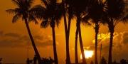 بالصور.. مطر من الأحجار الكريمة في هاواي