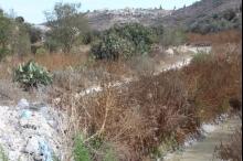 لعنة الوديان...واقع خُرب جنوب الخليل التي ترتوي بمياه المستوطنات العادمة