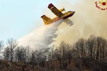 شابان يتسببان بحريق بسبب الشواء.. والغرامة 27 مليون يورو