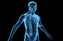 إكتشاف عضوا داخل جسم الإنسان يشعر بالألم