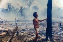 غابات الأمازون.. من هنا قد يأتي الوباء القادم