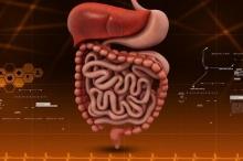 مرض التهاب الأمعاء.. الأسباب والأعراض والعلاج