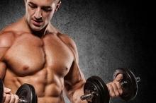 من أين تستمد العضلات قوتها؟