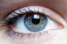 تقنية لزراعة أنسجة تعيد البصر