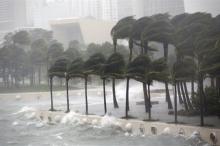 """""""ارم ذات العماد"""" هي إعصار ايرما؟؟"""