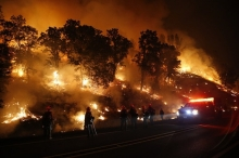 ما الفايروس الخطير الذي أتت به حرائق كاليفورنيا ؟