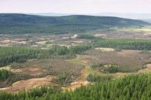 أمطار من النيازك دمرت غابة بحجم موسكو تهدد الأرض من ...