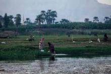 حياة ملايين المصريين في خطر لزيادة الملح في مياه دلتا ...