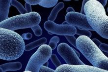 اكتشاف مضاد حيوي فعال في مكافحة البكتيريا المقاومة