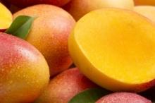 المانجو والبطاطس والبصل.. محاصيل أجنبية لم تكن تُزرع في بلاد ...