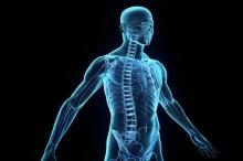 هل تعرف أن 78% من جسمك… غازات؟