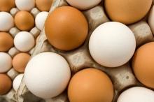 اتضح أننا نتبع طريقة خاطئة... أسرار بسيطة لطهي بيض مقلي ...