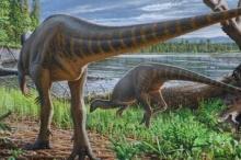 """الديناصورات ليست كلها عملاقة بعضها كان بحجم """"الديك الرومي""""! اكتشاف ..."""
