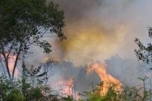 لهذه الأسباب.. حرائق الأمازون تدعو لقلق البشرية