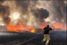 مع تصاعد الموجة الحارة جداً.. الحرائق تجتاح البلاد من شمالها ...