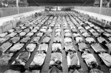تقديرات بعد مرور قرن على «الإنفلونزا الإسبانية» المميتة.. فيروس الإنفلونزا ...