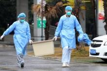 رقعة المرض تتسع.. فيروس كورونا الجديد يقتل أول طبيب في ...