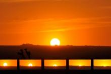 شاهد غروب الشمس فوق الكواكب الأخرى.. ناسا تصنع محاكاة رائعة ...