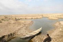 بسبب الجفاف القاتل ...العراق يعلن منع زراعة الأرز والذرة ومحاصيل ...