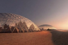الإمارات تخطط لزراعة النخيل على المريخ