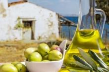 «البترول الأخضر» حاصد الجوائز العالمية.. ما هو سر زيت الزيتون ...