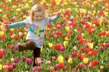 فصل الربيع يبدأ الأربعاء