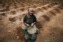 البشرية في خطر.. أزمة غذاء عالمية على الأبواب