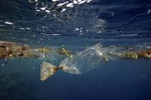 ثلاثمائة مليار قطعة بلاستيكية تسبح في المتجمد الشمالي