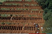 """استعداداً للأسوأ.. صور مُخيفة لمقابر جماعية ضخمة لدفن ضحايا """"كورونا"""" ..."""