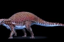 هذا آخر ما التهمه ديناصور قبل موته منذ 110 ملايين ...