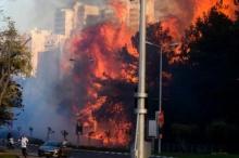 الحرائق المدمرة التي اندلعت في نوفمبر بحيفا والقدس، نموذج مصغر ...