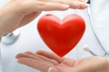 معلومات تعرفها لأول مرة.. لماذا لا يُصاب القلب بالسرطان؟
