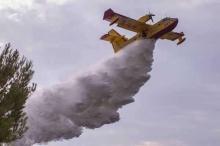 حرائق الغابات تكبد أميركا أكثر من ملياري دولار