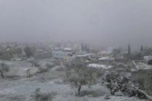 منخفض سالم البارد جداً في فلسطين اليوم بمشيئة الله