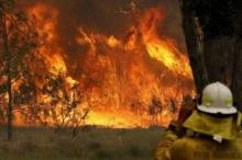 أستراليا.. ارتفاع حصيلة قتلى حرائق الغابات