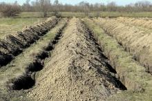 حفر مئات القبور.. أغرب طريقة للتشجيع على التزام العزل