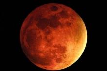 حياة جديدة على كوكب المريخ بحلول 2028