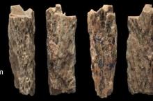فتاة ذات 13 عامًا ماتت منذ أكثر من 50000 عام.. ...