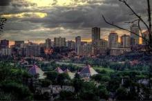 مفارقة بيئية: الأشجار في المدن الكبيرة تنمو أسرع منها في ...