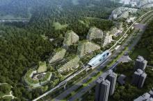 الصين بدأت رسميًا في إنشاء «مدينة الغابة» الأولى في العالم