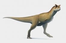 بالصور.. حيوانات غريبة عاشت على الأرض قبل ملايين السنين