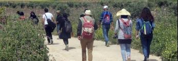 """نيران الاحتلال وقطعان المستوطنين وخنازيرهم تهدد وجود سياحة """"المسارات"""" ..."""