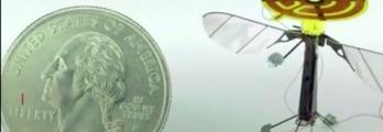 علماء يطورون روبوتات طائرة في حجم الحشرات